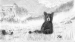 Fog Drawings - Foggy the Bear by Nils Beasley