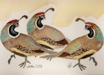 Quail Paintings - Follow Me by BJ Clausen