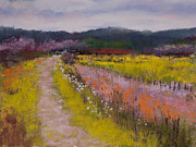 Field Pastels Prints - Follow the Daisies Print by David Patterson