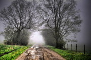 Country Scenes Art - Follow the Fog by Emily Stauring