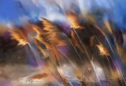 Pampas Grass Prints - Follow the Sun Print by Bob Salo