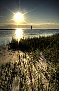 Folly Beach Posters - Folly Beach Grass Shadows Poster by Dustin K Ryan