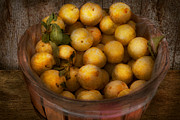 Bushel Photos - Food - Apple - Golden apples by Mike Savad