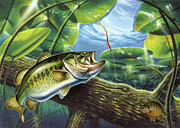 Lily Pads Paintings - Fooled Again Bass II by JQ Licensing