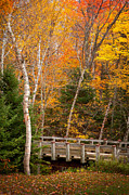 Ken Brodeur - Foot Bridge in the Fall...
