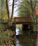 Creek Framed Prints Posters - Foot Bridge Poster by Ron Roberts
