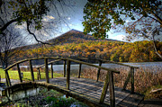 Fall Leaves Posters - Foot Bridge Poster by Todd Hostetter