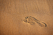 Step Prints - Foot Print Print by Carlos Caetano