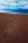 Storm Prints Prints - Foot Prints to the Sea Print by Matt Dobson