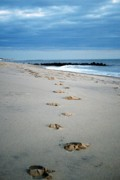 Rock Pile Prints - Foot Steps Print by Amanda Romolini