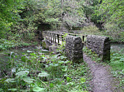 Countryside Posters - Footbridge at Millers Dale Poster by Rod Johnson