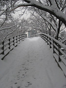 Cold Temperature Art - Footbridge by Jeff Penny