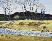Colorado Paintings - Foothills Cloud Shadow by James Robert MacMillan