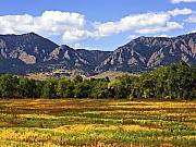 Fall Grass Prints - Foothills of Colorado Print by Marilyn Hunt