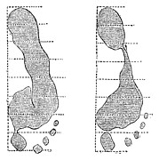 Footprint Forensics, 19th Century Print by