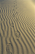 Nike Shoes Prints - Footprints in the Sand Print by Joe  Palermo