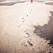 Snow Storm Prints Posters - Footprints in the Snow Poster by Christina Klausen