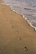 Surf Art Posters - Footprints Left Behind Poster by Suzanne Gaff