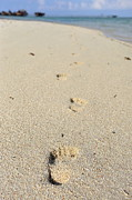 Getting Away Prints - Footprints on sand Print by Sami Sarkis