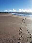 Aotearoa Metal Prints - Footsteps in the Sand Metal Print by Peter Mooyman