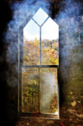Allegheny Cemetery Framed Prints - For now We See through a Glass Darkly Framed Print by Thomas R Fletcher