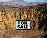 For Sale Sign In Desert Landscape Print by David Buffington