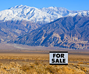 Arid Life Posters - For Sale Sign in Mountainous, Desert Landscape Poster by David Buffington