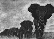 Elephants Drawings - For Willa by Tina Boyer