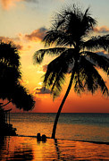 Tropical Sunset Prints - For YOU. Dream Comes True. Maldives Print by Jenny Rainbow