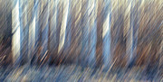 Abstract Impressionism Photo Prints - Forced March Print by Bill Morgenstern