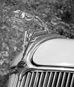 Transportation Framed Prints Prints - Ford Hood Ornament  Print by Brian Mollenkopf