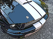 Carroll Shelby Photo Posters - Ford Shelby GT Nose Study Poster by Samuel Sheats