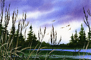 Wetland Paintings - Forest Beauty by James Williamson