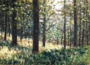Impressionism Acrylic Prints Metal Prints - Forest- County Wicklow - Ireland Metal Print by John  Nolan