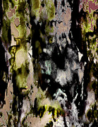 Collective Unconscious Prints - Forest Crones Detail Print by Richard Fisher