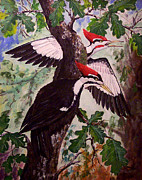 Woodpeckers Paintings - Forest Echo by Daniel McQuestion