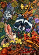 Raccoon Painting Framed Prints - Forest Fantasy Framed Print by Sherry Dole