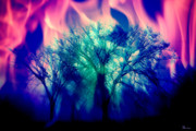 Photo Manipulation Originals - Forest Fire by Andrea Lawrence