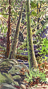 Ferns Paintings - Forest Green by Donald Maier