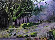 Wales Drawings - Forest in Wales by Harry Robertson