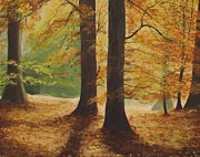 Irish Artists Painting Originals - Forest Light by Robert Gary Chestnutt