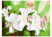 Casa Blanca Lilies Prints - Forest Lights Print by Helena Romanovsky