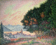 Pointillist Framed Prints - Forest near St Tropez Framed Print by Paul Signac