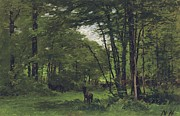 Fontainebleau Framed Prints - Forest of Fontainebleau Framed Print by Nathaniel Hone