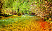 Lebanon Framed Prints - Forest river Framed Print by Anna Omelchenko