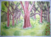 Autumn Landscape Drawings Framed Prints - Forest Scenery Framed Print by Indu Raghavan