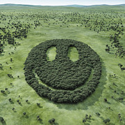 Smiley Face Framed Prints - Forest Shaped Smiley Framed Print by Hiroshi Watanabe