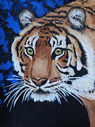 Wild Cats Paintings - Forest Tiger by Margaret Saheed