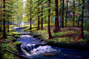 Fir Trees Painting Prints - Forest Waters Print by David Lloyd Glover