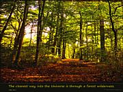 Forest Wilderness Print by Yvon -aka- Yanieck  Mariani